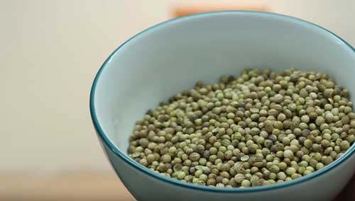 KoMo coriander grinding
