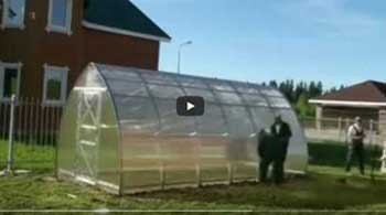 Strelka 3 greenhouse